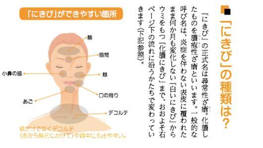 nikibi3.jpg